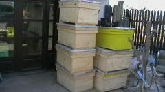 Stupi pentru albine din lemn