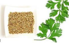 Coriandru - seminte