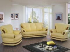 Canapea si fotolii piele ecologica