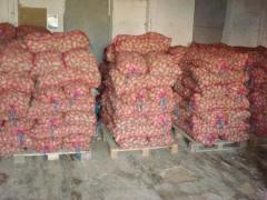 Cartofi rosii