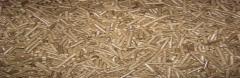 Pelete lemn foioase si rasinoase