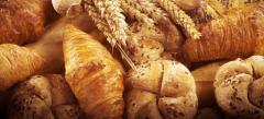 Cornuri, grisine, paine, prajituri