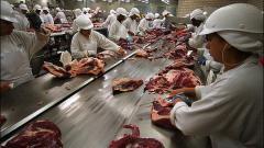 Abator carne de vita