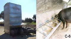 Bunkers for pigs soother