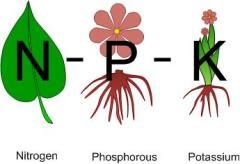 NPK-fertilizers