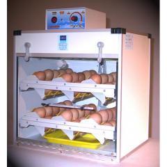 Incubators for eggs