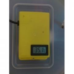 ميزان الحرارة الرقمي
