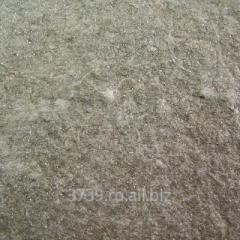 Sist Gneis Argintiu Scapitat