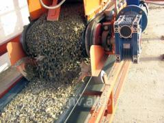 Concrete plant stabilized