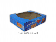 Carton Caser - with double wall