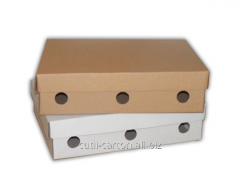 Boxes with removable lid