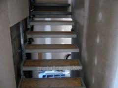 Ladders for interior premises