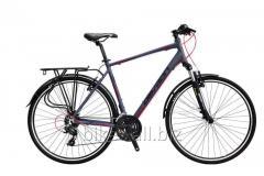 Bicycles racing