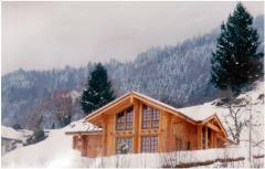 Casele din lemn masiv