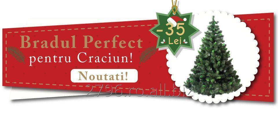 brad_artificial_pentru_craciun