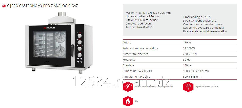 gpro_gastronomy_pro_7_analogic_gaz