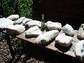 Pietre pentru sauna