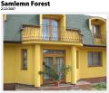 Blocuri ferestre si componente set din lemn