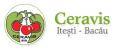 CERAVIS, Iteşti