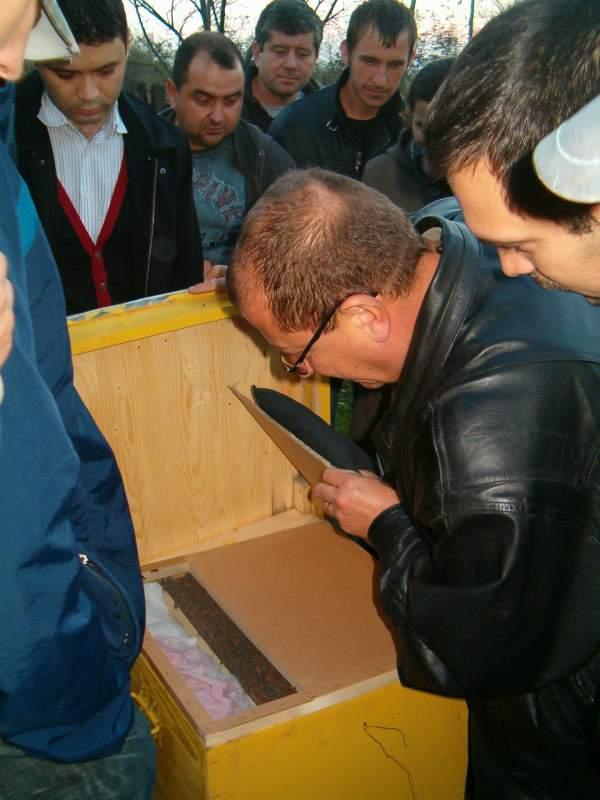 Comanda Cursuri de calificare in meseria de apicultor