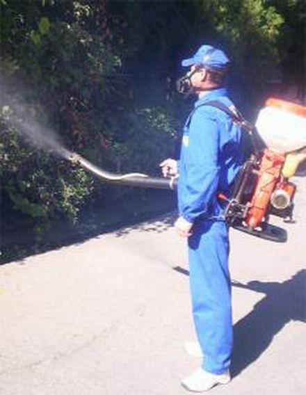 Comanda Servicii de deratizare, dezinsecţie si dezinfectare