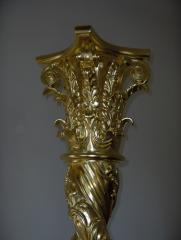 Aurire coloana iconostras