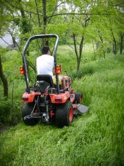 Întreținere spații verzi