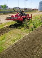 Prelucrare teren grădină