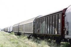 Transport feroviar de marfa