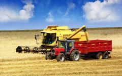 Comert Cereale - Prezentarea activitatii