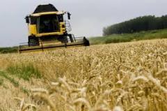 Servicii agricole