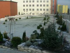 Amenajare de gradina cu Piatra Naturala de Vistea