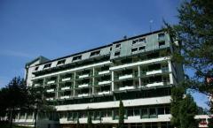 Cazare hotel Bradul