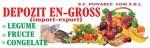 Сomercializarea en - gross si en-detail de legume
