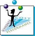 Аsistenta in implementarea sistemelor de management
