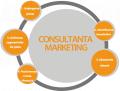 Consultanta in marketing si studii de piata