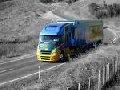 Transporturi rutiere containerizate
